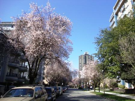 カナダ留学march3